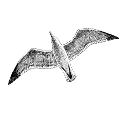 ambassade-bretonne-creperie-artisanale
